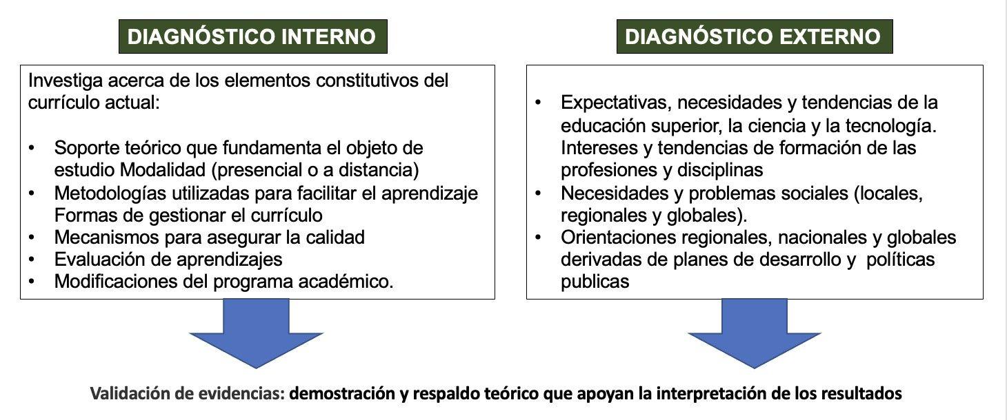 elementos constitutivos diagnostico programas