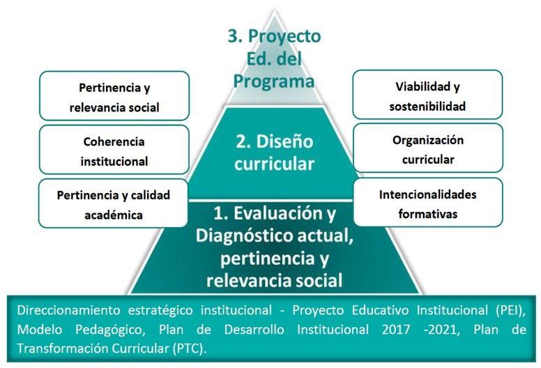 etapas plan transformacion curricular