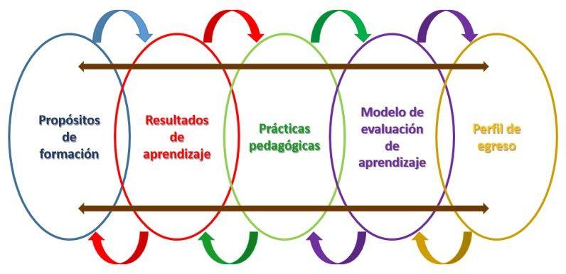 relacion elementos componentes formativo