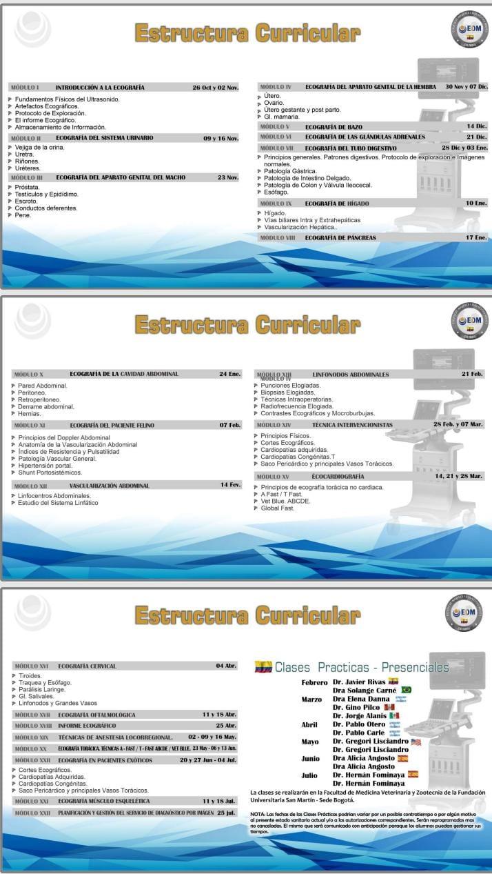 diplomado mvz ecografia veterinaria pequenias especies4